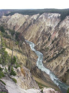 Yellowstone River at the bottom of the canyon