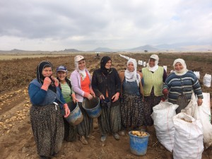 Turkish women taking a break from potato picking to pose for a picture